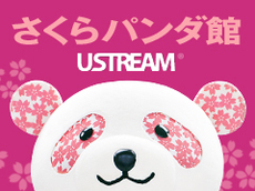 Ust_channel